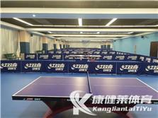 乒乓球场地建设